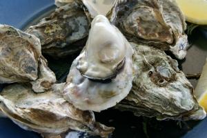 oyster_ushimado03s