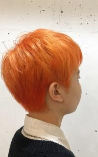 ハイトーンカラー×オレンジ サロンギャラリー  ヘアカタログ